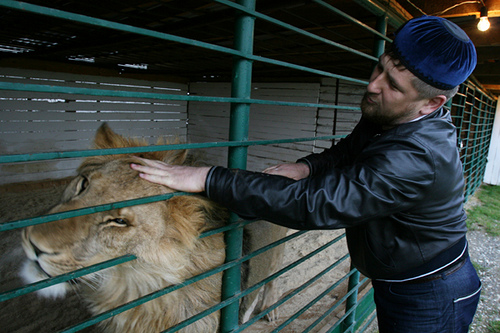 Chechen president Ramzan Kadyrov petting a lion in his private zoo. Photo by Sergei L. Loiko courtesy Los Angeles Times